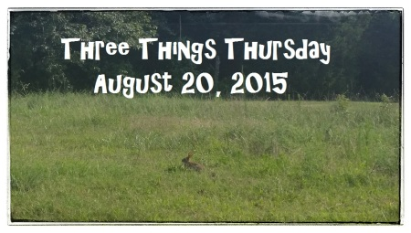 title august 20 3 things