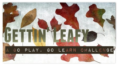 go play go learn leaves title
