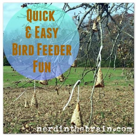 quick and easy bird feeder fun title