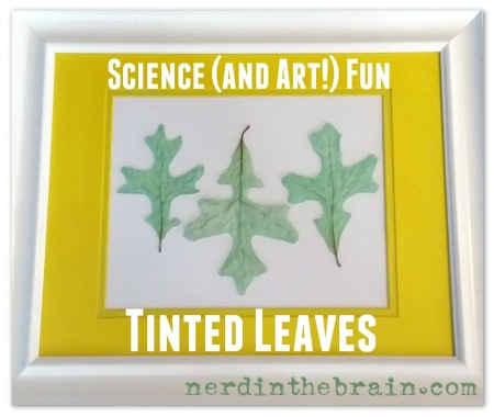 tinted leaves framed title