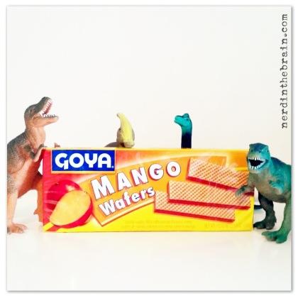 Adventure Snack | Mango Wafers